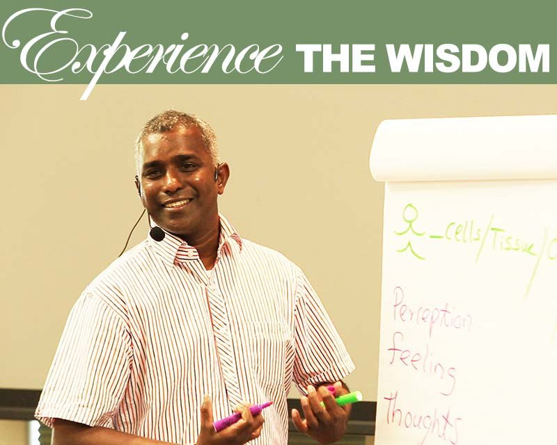 newsletter-experience_the_wisdom_1_1024x1024
