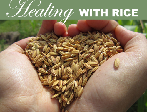 Healing with Rice