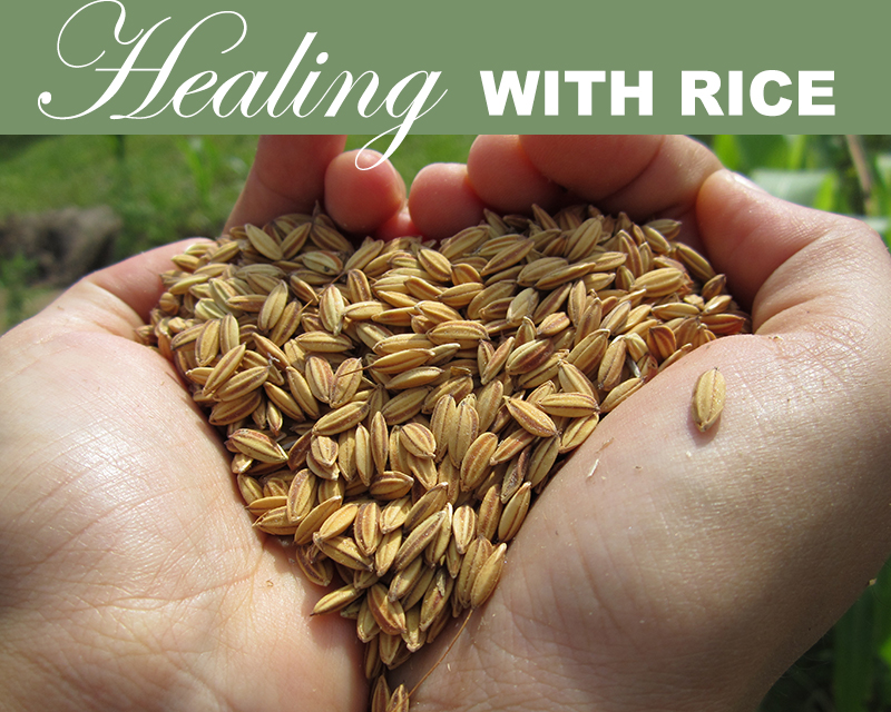 Newsletter-Healing with Rice
